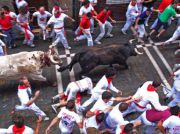 Pamplona: Running of Bulls event  (July, 7th)